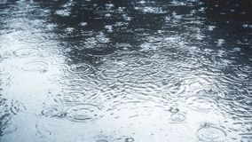 Rain falling on pavement in slow motion. Broadcast quality footage stock footage
