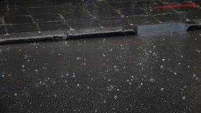 Rain falling on the road stock footage