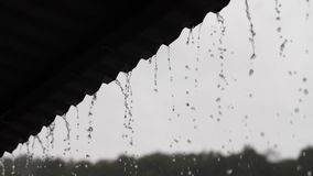 Rain falls down from a roof. Rain flows down from a roof down stock video footage