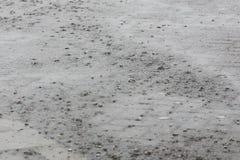 Rain falls on a street Stock Photo