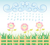 Rain flower Royalty Free Stock Photos