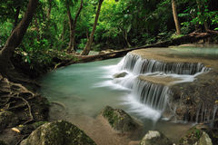 Rain forest. The waterfall in rain forest stock image