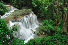Rain forest. The waterfall in rain forest royalty free stock image