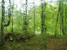 Rain in the forest Royalty Free Stock Photography