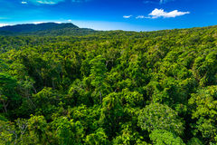 Rain forest from air near Kuranda, Queensland, Australia. Rain forest from air near Kuranda, North Queensland, Australia royalty free stock image