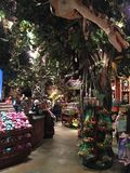 Rain Forest Cafe Gift Shop Royalty Free Stock Photo