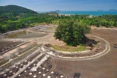 Rain forest destruction for shrimp farm form Aerial view Royalty Free Stock Photos