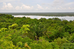 Rain Forest and Lagoon View in Central America Royalty Free Stock Photo