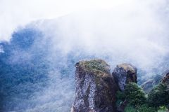 Rain forest mountain with cloud and fog. Rain forest mountain cover with white cloud and fog.  Summer time holiday trekking and hiking in Thailand at  Doi Innd Royalty Free Stock Image