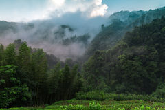 After the rain forest mountains Royalty Free Stock Images