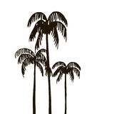 Rain forest, palm tree silhouettes Royalty Free Stock Images