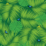Rain forest pattern Royalty Free Stock Images