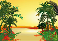 Rain forest on the river. Illustration of a rain forest with trees, ferns and a river Royalty Free Stock Photography
