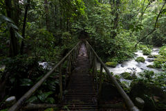 Rain Forest Stream Crossing. An old metal bridge crossing a rainforest stream at La Selva Biological Station in Costa Rica Stock Photography