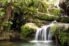 Waterfall. In a rainforest. Isalo national park, Madagascar royalty free stock images