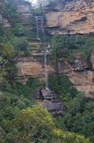 Rain forest waterfall panorama. A true vertical panorama of a rain forest waterfall, known as Katoomba Falls in the Blue Mountains National Park of eastern Royalty Free Stock Photo