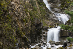 A Rain Forest Waterfall. A stream rapidly coursing down a mountainside in a rain forest Royalty Free Stock Photography