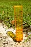 Rain gage. A yellow rain gage with some rain in the sand with a grassy background. Vertical perspective royalty free stock photo