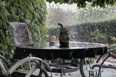 Rain on the garden Royalty Free Stock Image