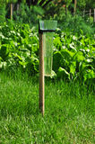 Rain gauge garden Royalty Free Stock Photos