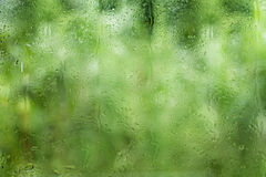 Rain in glass Stock Images
