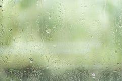 Rain in glass Stock Image