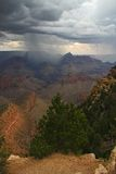Rain in Grand canyon Stock Images