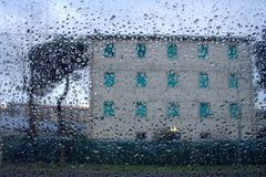 In the rain. Green windows and tree Royalty Free Stock Photography