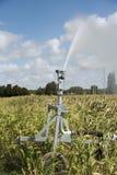 Rain gun watering crops Royalty Free Stock Images