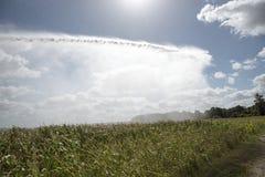 Rain gun watering crops Royalty Free Stock Image