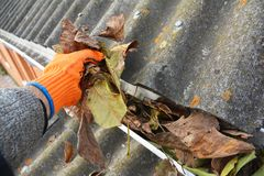 Rain Gutter Cleaning from Leaves in Autumn . Roof Gutter Cleaning Tips. stock photos