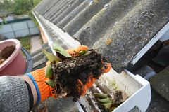 Rain Gutter Cleaning. Scooping leaves from gutter. Clean and Repair Rain Gutters and Downspout with roofer hands. stock image