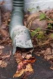 Rain Gutter Clogged With Colorful Leaves Royalty Free Stock Photography