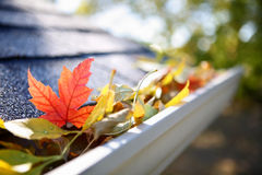 Rain gutter full of autumn leaves. A close-up of a rain gutter full of fall leaves Stock Photo