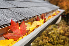 Rain Gutter full of leaves Royalty Free Stock Images