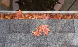 Rain gutter on home clogged with leaves Royalty Free Stock Images