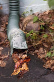 Rain Gutter Runoff Plugged By Autumn leaves Stock Image