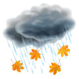 Rain illustration. Realistic gray clouds, raindrops and leaves. Rain illustration. Realistic gray clouds, raindrops and falling orange maple leaves. Autumn and Stock Images