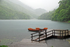 Rain on the lake Royalty Free Stock Photo