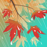 Rain and leafs. Abstract style rain and leafs vector