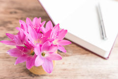 Rain Lily on wood background Royalty Free Stock Images