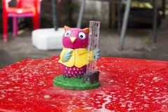 Rain measure. Owl rain measure waiting for the weather to turn really bad Stock Image