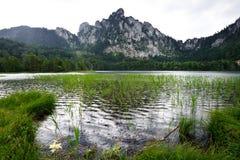 Rain on the Mountain Lake Royalty Free Stock Photo