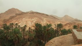 Rain in oasis of date palms Sahara Tamaqzah Tunisia. Border with Algeria Atlas mountains stock video
