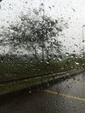 Rain outside my window Royalty Free Stock Photos
