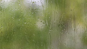 Rain outside the window and drops run down the glass. Rain outside the window. The drops of rain run down the glass, the branches of a tree with green leaves are stock footage