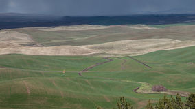 Rain Over the Palouse stock images