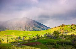 Rain over the rural fields on hills. Beautiful springtime landscape of Carpathian mountains Royalty Free Stock Photo