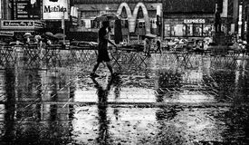 Man in rain in Times Square, New York Royalty Free Stock Image