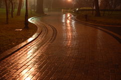 Rain in the Park at night. Path after a rain at night royalty free stock photo